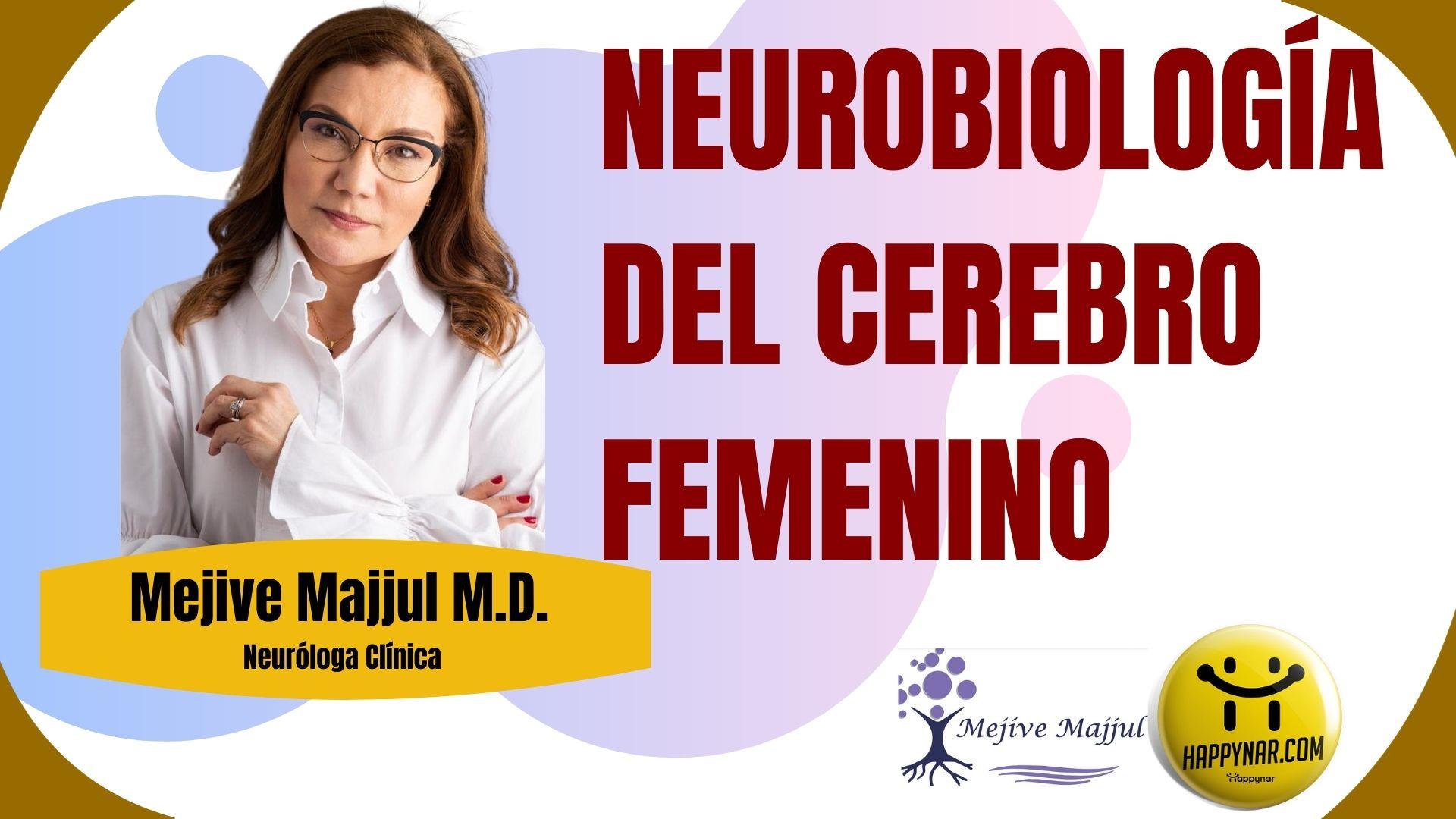 Neurobiología Cerebro Femenino